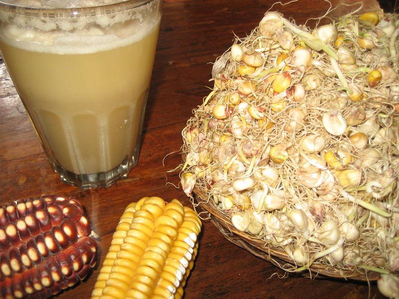 Corn beer